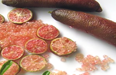 Finger Lime Pink Ice - Caviale di Limone